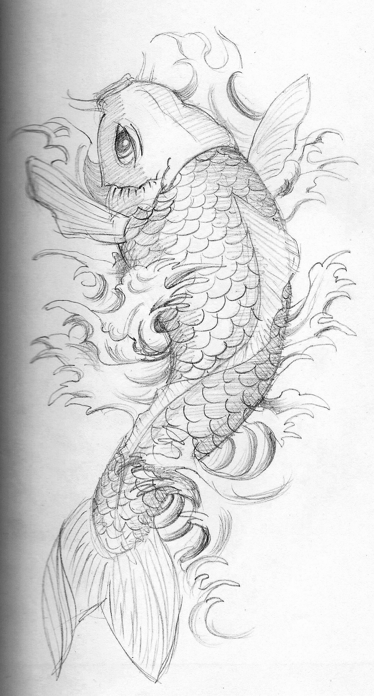 1000 images about koi tattoo ideas on pinterest for Koi fish sketch