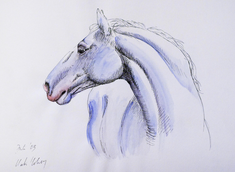 tattoo pferd aquarell